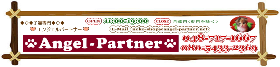 �`���`���̃u���[�_�[���� �L���y�b�g�V���b�v Angel-Partner home